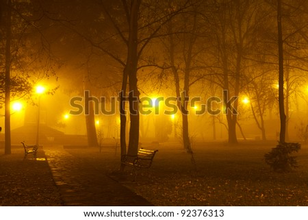 Fog in the park