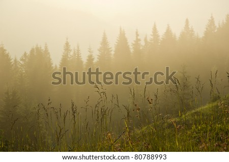 Fog is falling down on mountain. Nice background for desktop wallpaper. - stock photo