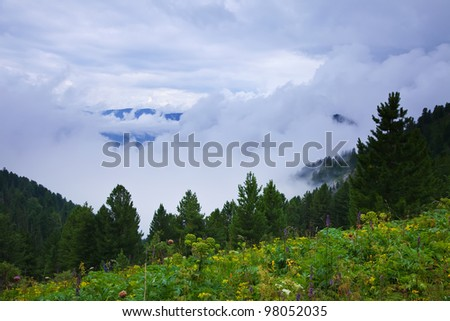 fog landscape with forest mountains. Altai, Siberia - stock photo