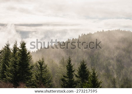 Fog lifting from the Blue Ridge Mountains to expose the endless ridges and valleys in the Blue Ridge Mountains - stock photo