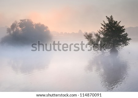 Fog mist landscape over lake in Autumn Fall with vibrant colors - stock photo