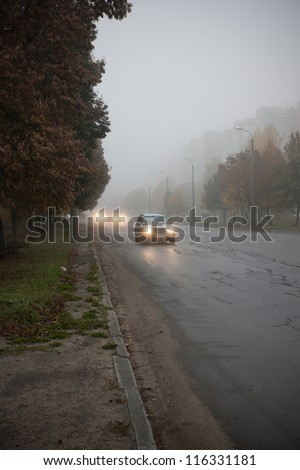 Fog on a road