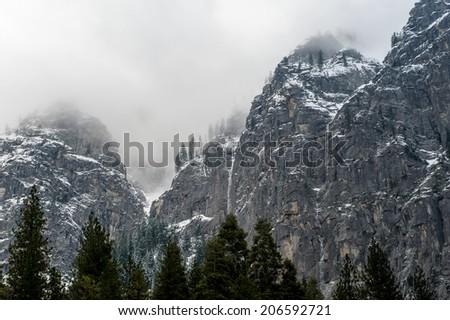 Fog on the tree line - stock photo