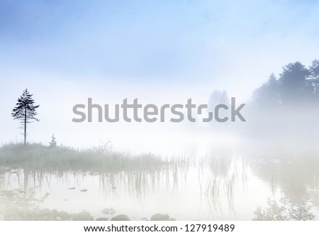 Fog over a Scandinavian lake in early morning - stock photo