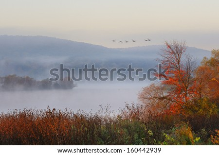 Fog Over Lake with Flying Geese - stock photo