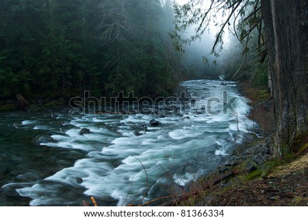 Fog over the Sol Duc River in Olympic National Park, WA - stock photo