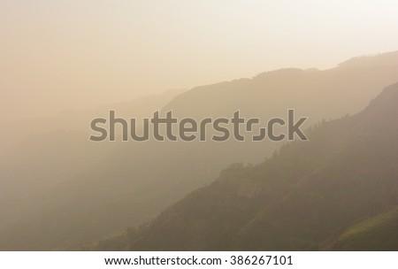 Fog within Garajonay National Park under the fog, La Gomera, Spain - stock photo