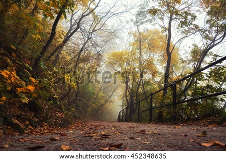 Foggy autumn morning in Budapest, Hungary