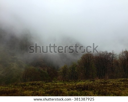 Foggy Carpathian Mountains - stock photo