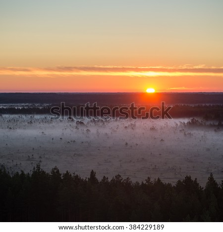 Foggy colorful morning above fields in countryside