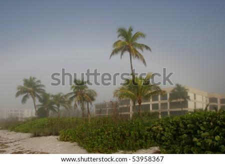 Foggy Dawn Oceanfront Beach Condominium Sanibel Florida - stock photo