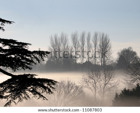 Foggy Day in the Country - stock photo