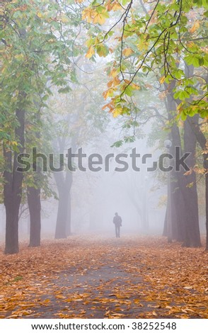 foggy fall with lonely man - stock photo