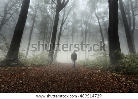 Foggy forest and man on the trail