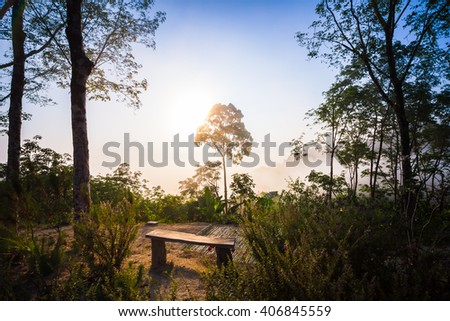 Foggy Forest with sun beam - stock photo