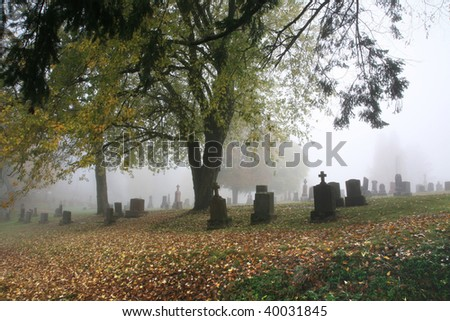 Foggy graveyard - stock photo