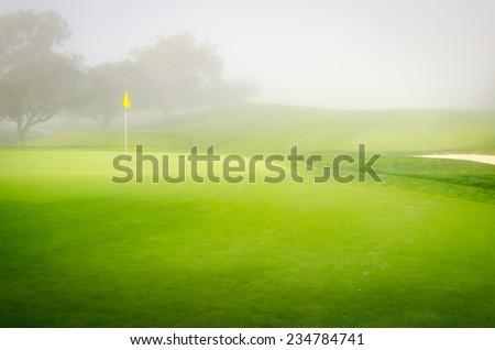 Foggy Green - stock photo