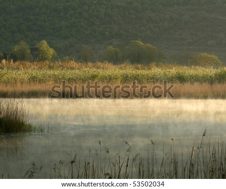 Foggy lake early in the morning - stock photo