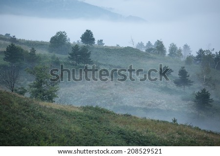 foggy landscape - stock photo