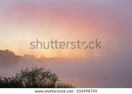 Foggy landscape at dawn of Jackson Hole Lake with geese, Fort Custer State Park, Michigan, USA