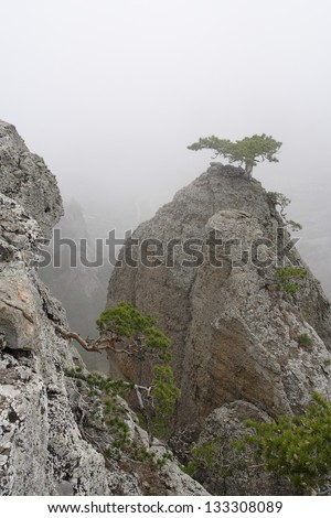 Foggy landscape in the Valley of Ghosts, Crimea, Ukraine - stock photo