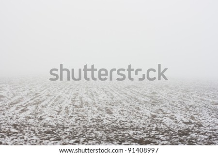 Foggy landscape seen from a moving train (motion blurred image) - stock photo