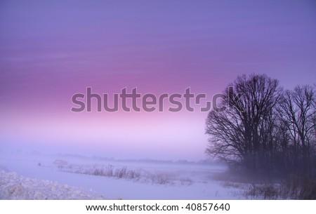 Foggy morning - stock photo