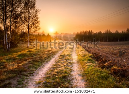 foggy morning and rural road. landscape - stock photo