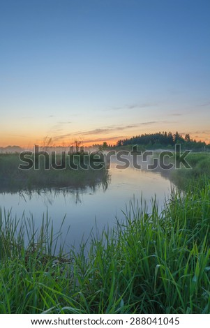 Foggy morning at the river. Sunrise at the river. Trees in fog on the river bank in the morning. The rays of dawn sunlight illuminate the clearing with wildflowers and grass.  - stock photo