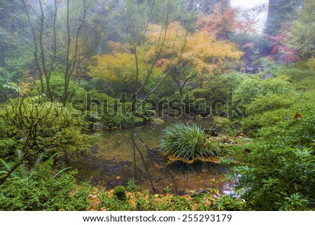 Foggy Morning by the Pond at Portland Japanese Garden in Autumn - stock photo