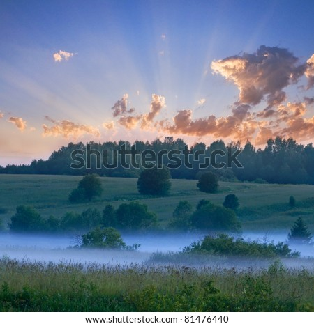 Foggy morning in a field. - stock photo