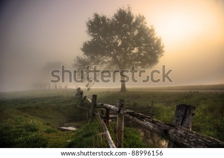 Foggy morning in the countryside - stock photo