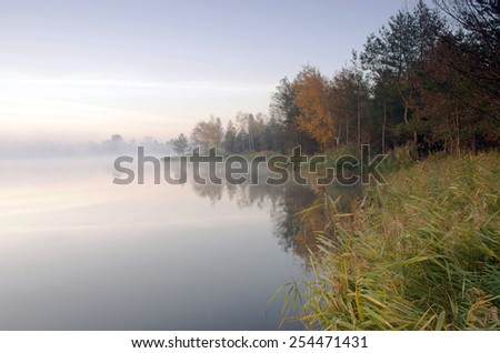 Foggy morning landscape in the autumn park near the lake. - stock photo