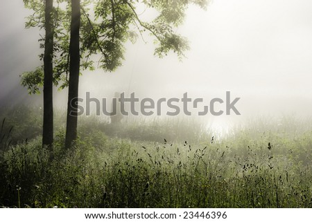 foggy morning scene with fisherman - stock photo
