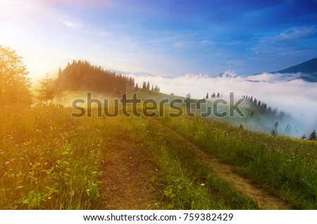 Foggy morning shiny summer landscape with mist and mountain road