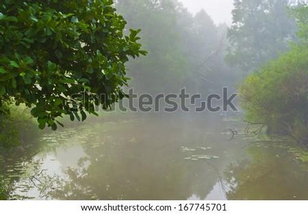 Foggy morning. Sukhodrev river, Kaluga region, Russia - stock photo