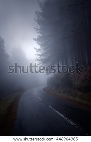 Foggy mountain road at noon