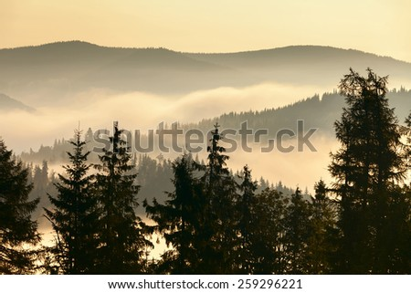 Foggy mountains landscape - stock photo