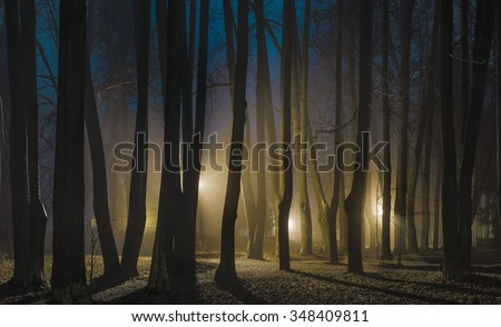 "Foggy night in late autumn. The park of Museum-Reserve ""Muranovo"". Moscow region, Russia - stock photo"