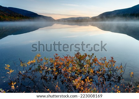 Foggy Polygonal lake with yellow willow in the foreground in Hibiny mountains in the early morning before sunrise - stock photo