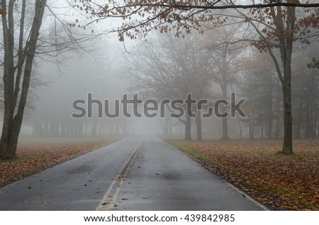 Foggy Road in Autumn with Car Headlights in Distance - stock photo