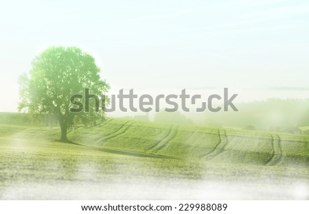 foggy rural landscape in the morning, with typical bavarian chapel - stock photo