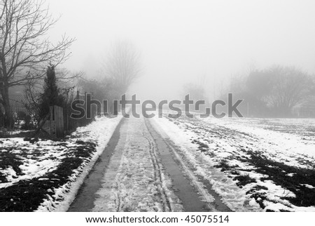 Foggy rural road in the winter