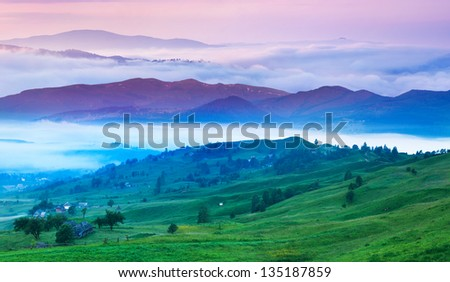 Foggy summer morning in the Carpathian mountains. Ukraine, Europe. - stock photo