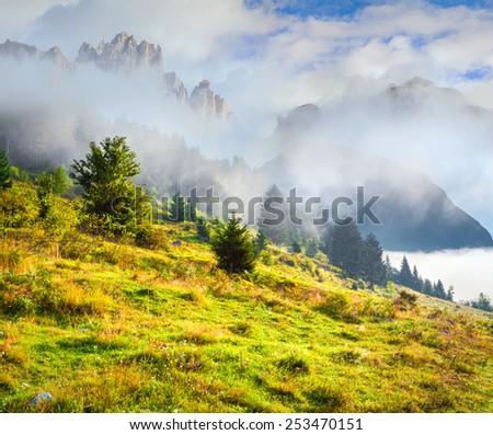 Foggy summer morning in the italian dolomites alps.  - stock photo