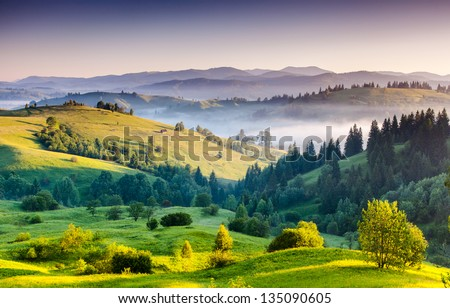 Foggy summer morning in the mountains. Carpathian, Ukraine, Europe. Beauty world. - stock photo