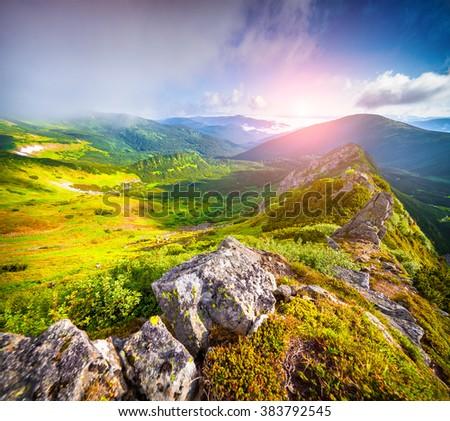 Foggy summer scene in Carpathian mountain. First sunlight glowing cliff and grass in the mountain valley. Location Chornogora ridge, Ukraine, Europe. - stock photo
