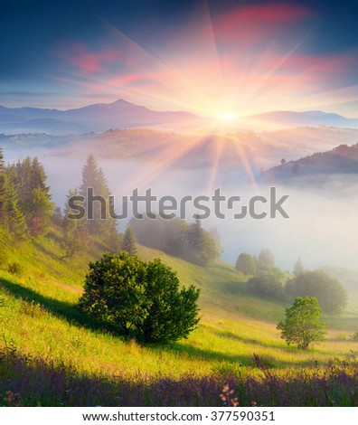Foggy summer scene in the mountain village. Sunrise in the Carpathians, Ukraine, Europe.  - stock photo