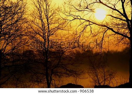 Foggy sunrise - stock photo