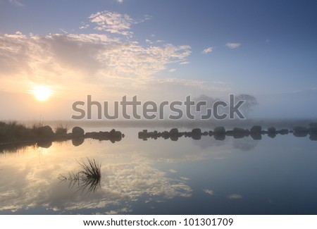 Foggy sunrise at the water in a new nature area in the Netherlands. - stock photo
